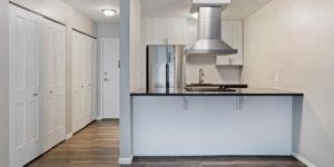 hooded stove top and stainless appliances